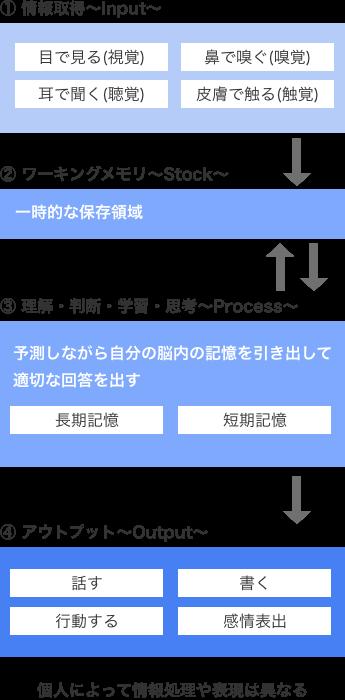 情報処理過程SP
